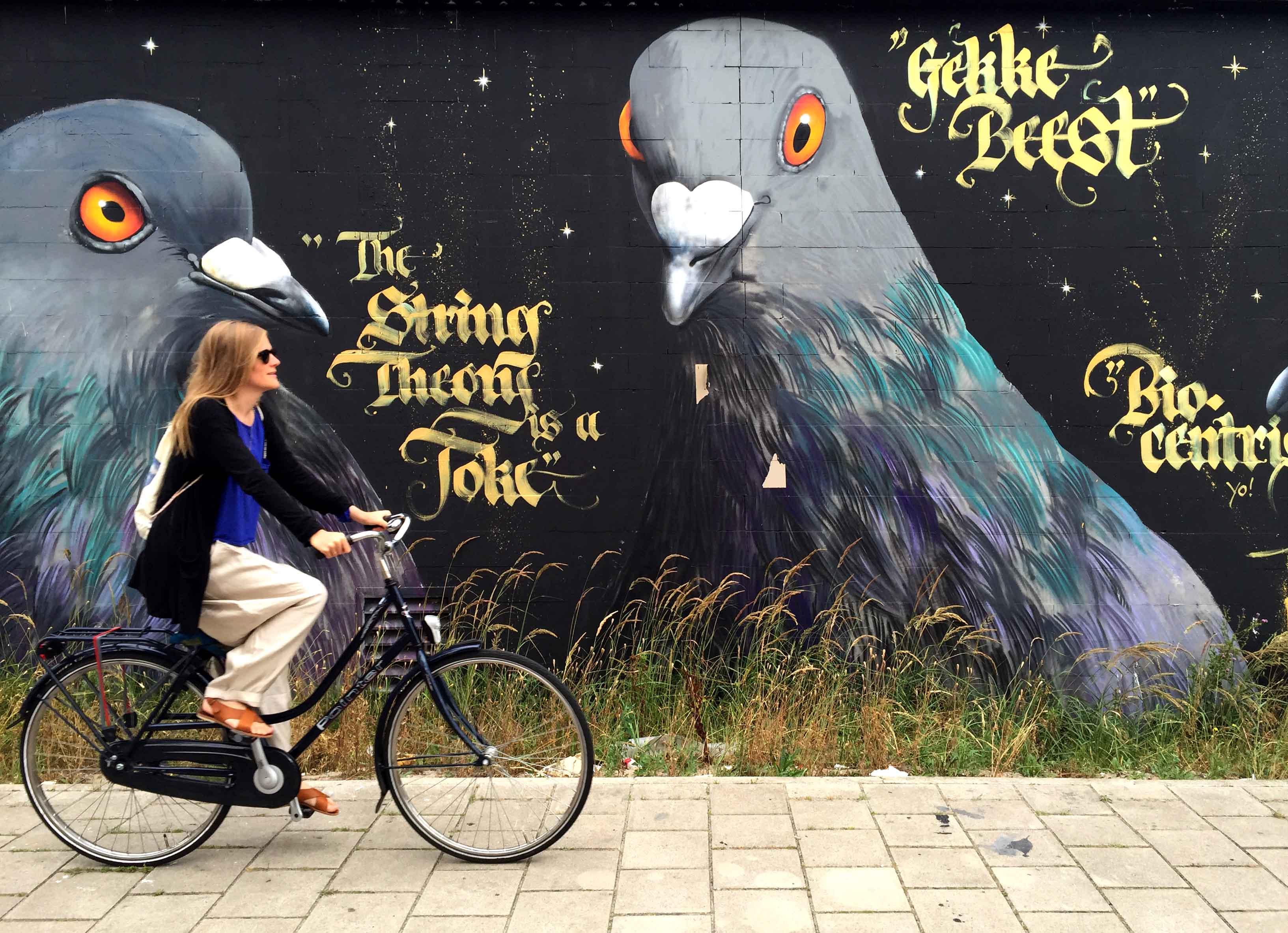 Metterschling in Amsterdam Noord 2015
